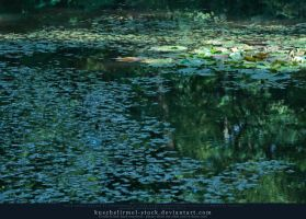 Lilly Pond I by kuschelirmel-stock