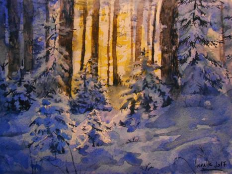 winter forest by llenella