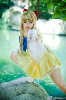 Sailor Venus Eyes on You by HollyGloha