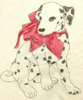 Dalmation Sketch by MissMinda