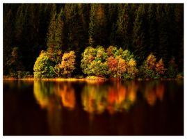 Autumn Magic by Sortvind