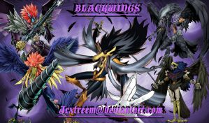 Blackwings Wallpaper by jcxtreem