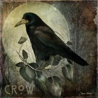 The Crow Moon by jhutter