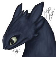 HTTYD - Toothless by TamHorse