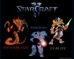 Starcraft 2 Three Classes by Darc1n