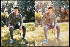 PSD coloring 2 by MF1993