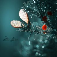 - Pixie's lost wings - by S-Patriot