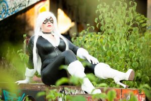 Black Cat by BellaHime