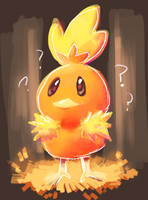 Torchic by sweating