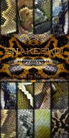 Snakeskin by Natalivesna