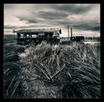 Bombay Beach by perry