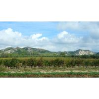Les Alpilles by 13-septembre