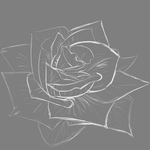 White Rose Lines by noisrevortni