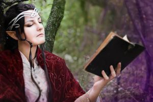 The Lord of the Ring cosplay. Elrond 2 by Mellefuielle