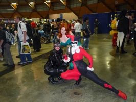 Gotham City Sirens Pose by theprincessbee