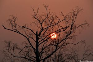 Wrath of the Red Sun by Sulde