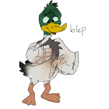 A Duck by riley-the-ambivert