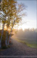 Autumn Morning by Sarah--Lynne
