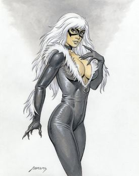 BlackCat commission by PaulAbrams