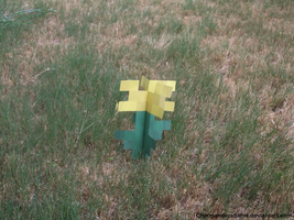 Minecraft Dandelion in grass by CharmandersFlame