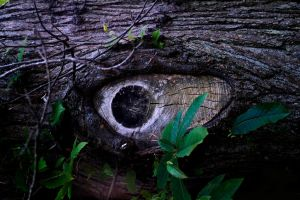 eye by awjay