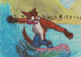 Crash surfing by TNT-DOG