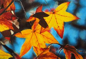 Fall leaves by Fco-G