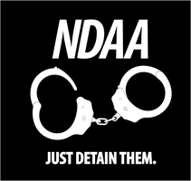 NDAA - Just Detain Them by gonzoville