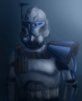 501st Blue by SpaceSharkz