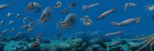 A Brief History of Cephalopods by Edestoid