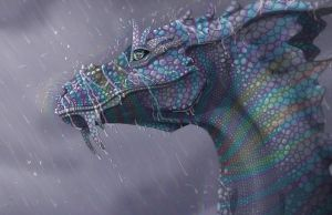 Rainy Season Detail by Middien