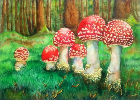 Magic Mushrooms by rougealizarine