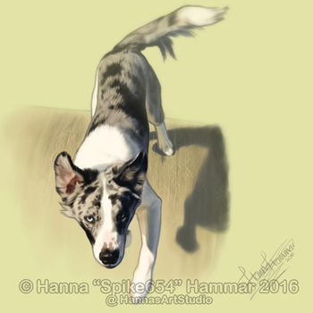 Sketchy Pet Portrait 12 by HannasArtStudio