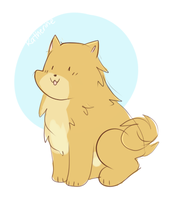 *pomeranian* by cookiiecats