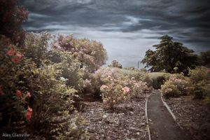 My Eden - InfraRed by comicidiot