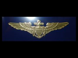 US Navy Aviator Wings by FantasyStock