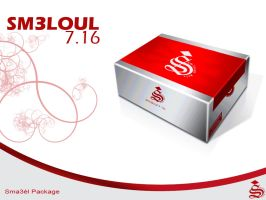 MY_PACKAGE by sm3loul