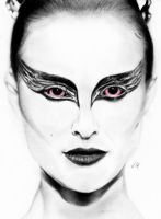 Black Swan by hans11