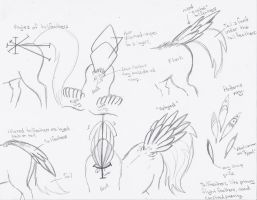 Tailfeather Tutorial by KyuremGirl