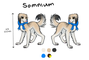 Somnium Reference by Closet-Furry
