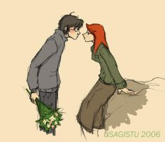 Harry and Ginny by usagistu