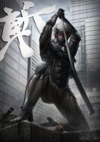Metal Gear Rising - Raiden by michaellam