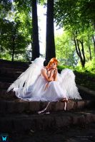 Angel... by ShainyV
