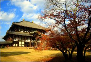 Todaiji .take 1. by calenheniel