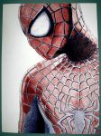 The Amazing Spiderman by TheAbsurdBoy