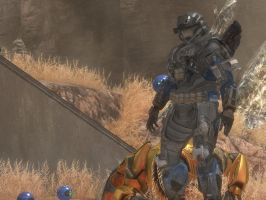 Halo Reach: nothing to see by purpledragon104