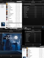 Midnight Player for iPad by Tjdyo