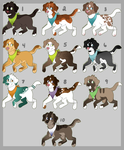 Canine Adopts (7/10 Open) by HP-Adopts