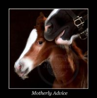 Motherly Advice by Photopolis