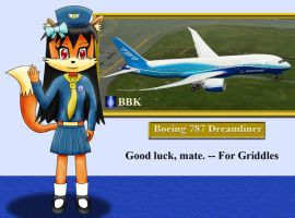 Robin Air Stewardess by BB-K